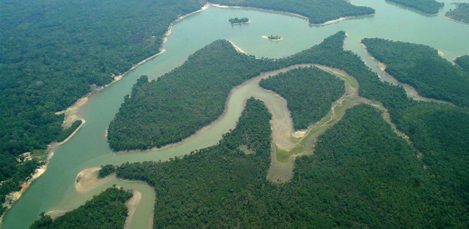 Jovens colombianos garantem proteção à floresta