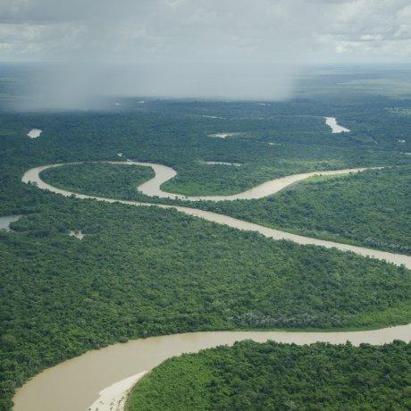 Amazonia Live's Partners Network