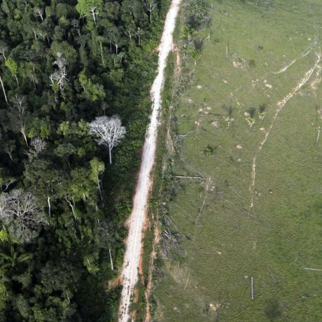 A situação da Amazônia
